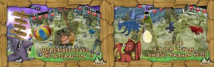 Dragão Pet Imagem 2